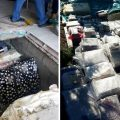 Clanul CLĂMPARU a furat cărți valorând peste 2 milioane lire sterline